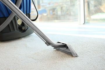 Carpet Steam Cleaning by Teddy Bear Carpet Care LLC
