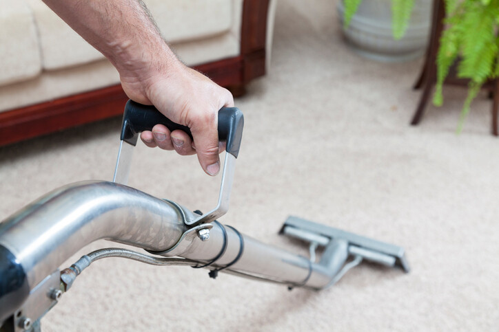Carpet Cleaning Prices by Teddy Bear Carpet Care LLC