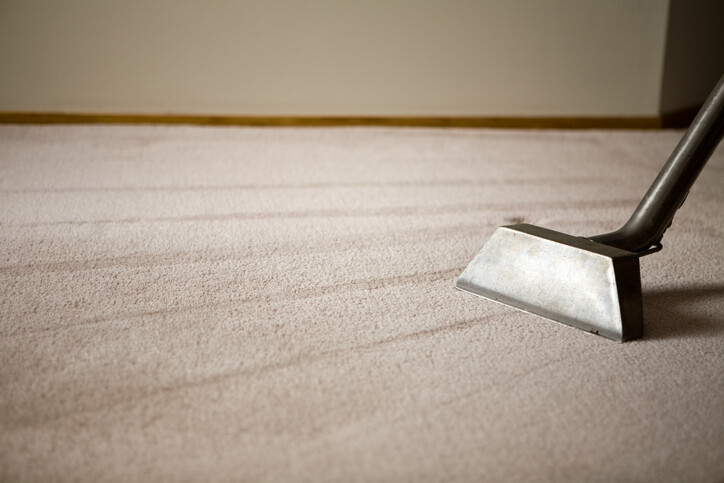 Steam Cleaning by Teddy Bear Carpet Care LLC