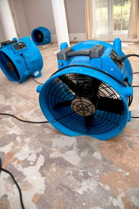 Teddy Bear Carpet Care LLC's drying fans in water damaged house.