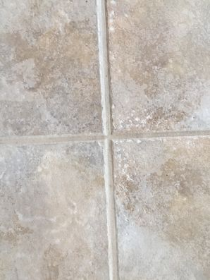Tile & Grout Repair in Jacksonville, FL (2)