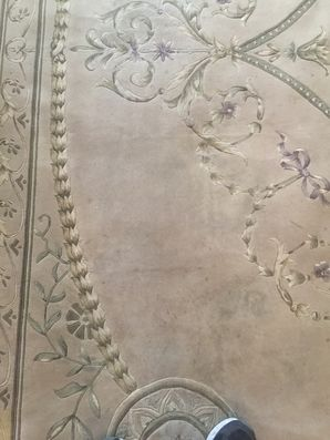 Oriental Rug Cleaning in Jacksonville, FL (3)