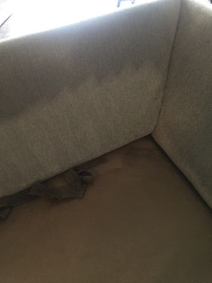 Before & After Upholstery Cleaning in Jacksonville, FL (1)