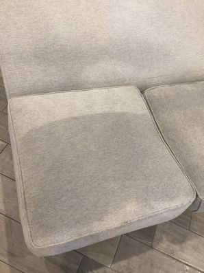 Upholstery Cleaning in Jacksonville, FL (2)