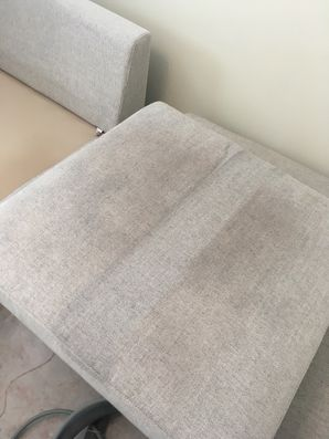 Upholstery Cleaning in Jacksonville, FL (1)