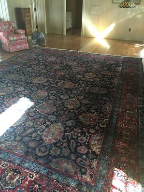 Rug Cleaning in Jacksonville, FL (1)