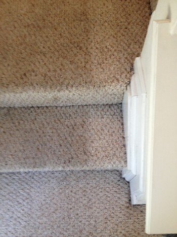 Berber carpet cleaning