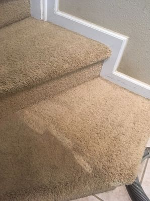 Carpet Cleaning in Jacksonville, FL (1)