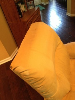 Upholstery Cleaning for a Loveseat in Jacksonville, FL