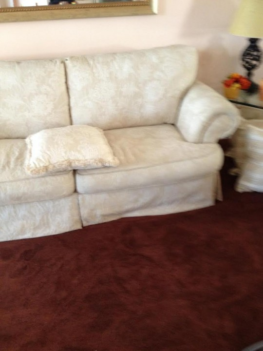 Upholstery Cleaning by Teddy Bear Carpet Care LLC in Jacksonville, FL