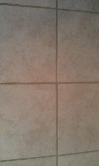 Tile & Grout Cleaning in Jacksonville, FL by Teddy Bear Carpet Care LLC