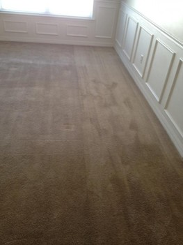 Carpet Cleaningin St. Augustine, FL, Look at the incredible difference.